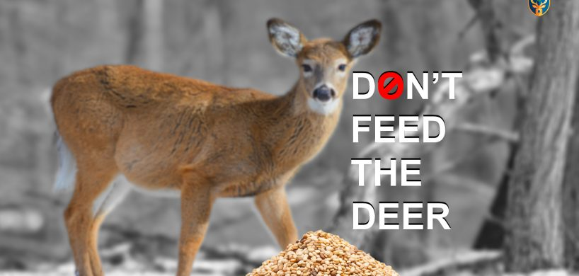 "A deer looking at a pile of seed put out and the title ""Don't Feed The Deer"""